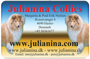 julianina banner
